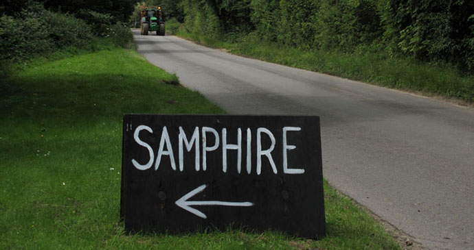 Samphire, Norfolk by Laurence Mitchell