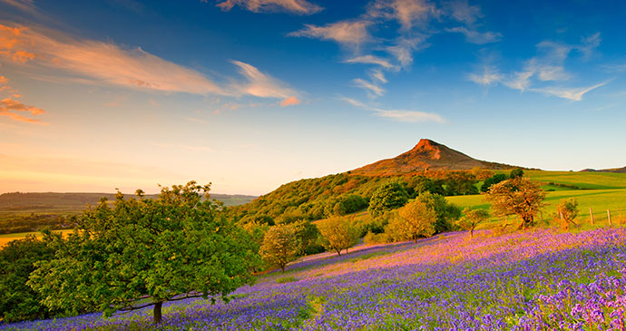 Roseberry Topping, North York Moors by Colin Carter, NYMNPA