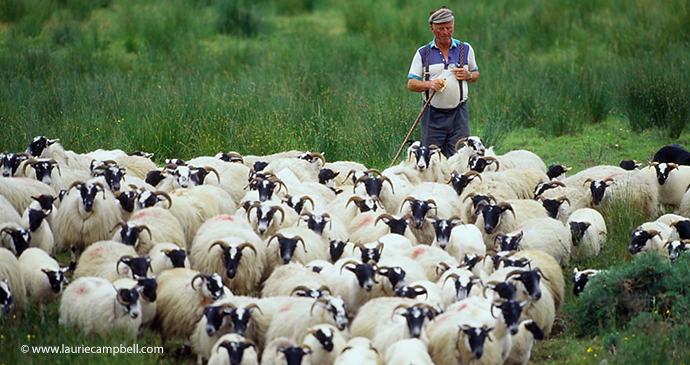 Shepherd Outer Hebrides Scotland by Laurie Campbell Photography www.lauriecampbell.com