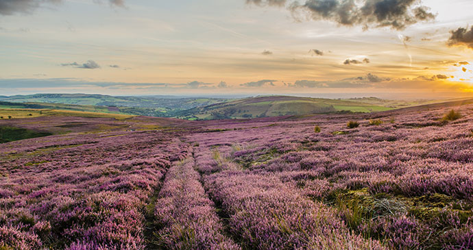 Hathersage Moor Peak District National Park by Paul Daniels Shutterstock