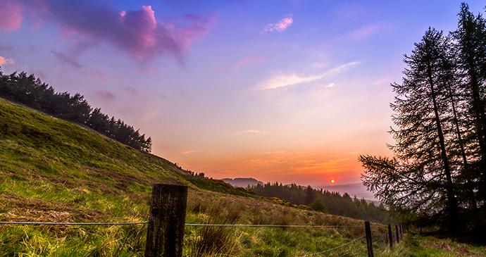Falkland Hill, Small Hills by Niall Hedderman, Shutterstock