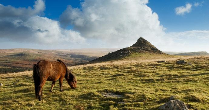 Dartmoor National Park Devon UK by Visit Dartmoor