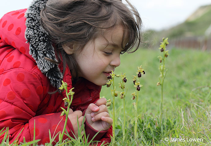 Early Spider Orchid and child, UK, James Lowen