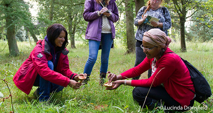 Foraging UK Wild times by lucina dransfield