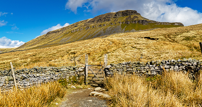 Pen-y-ghent Yorkshire Dales by Kevin eaves Shutterstock