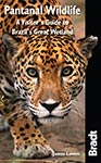Pantanal Wildlife the Bradt Guide
