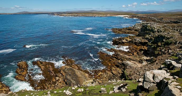 Coast, Pebble Island, Falkland Islands by Enrique Aguirre, Shutterstock