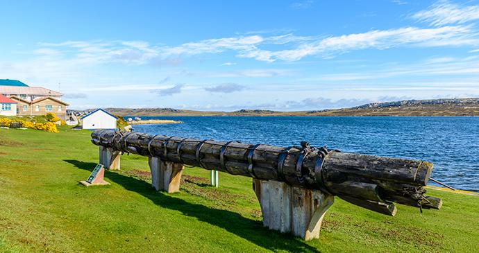Mizzen-mast, Stanley, Falkland Islands by Anton_Ivanov, Shutterstock