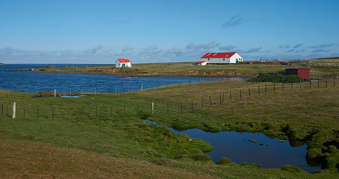 Bleaker Island, Falkland Islands by jeremyrichards, Shutterstock