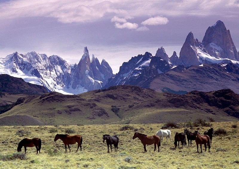 Mount FitzRoy, Patagonia, Argentina by Annalisa Parisi, Wikipedia