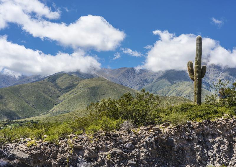 Ruta Provincial 307, Argentina by Anibel Trejo, Shutterstock