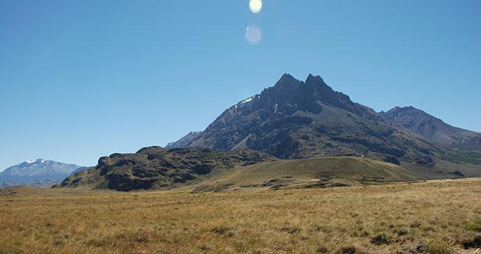 Parque Patagonia, Carretera Austral, Chile by Hugh Sinclair