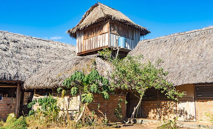 Caiman House Guyana by Gail Johnson, Shutterstock