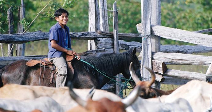 Dadanawa ranch Guyana by Wilderness Explorers
