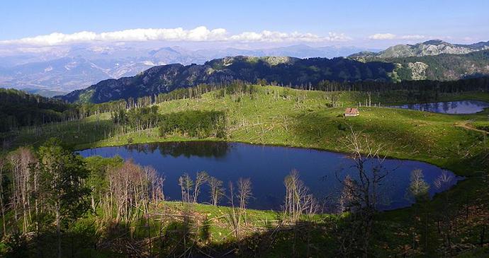 The Lura National Park, Albania by Ermal Hasimja, Wikimedia Commons
