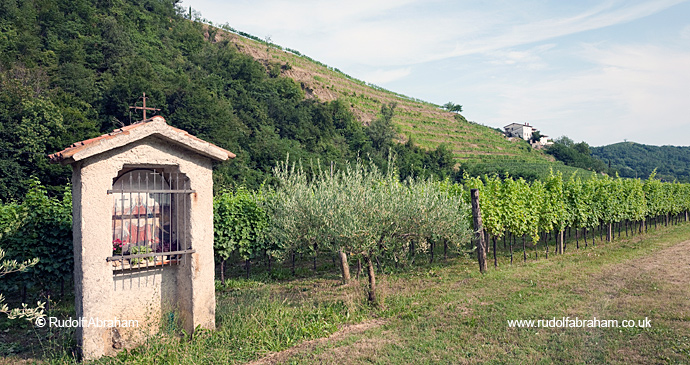 Brda wine region Slovenia Alpe Adria Trail by Rudolf Abraham