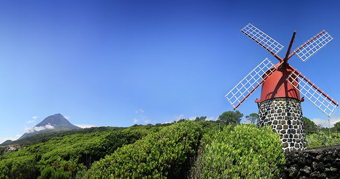 Windmill Faial Azores Dave, Dreamstime