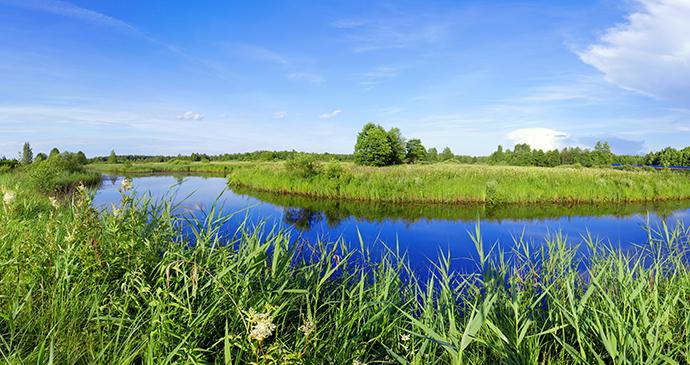 Berezinsky Biosphere Reserve Belarus Europe by nodff Shutterstock