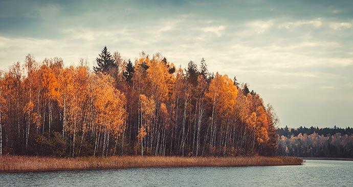 Narochansky National Park Belarus Natallia Khlapushyna Dreamstime