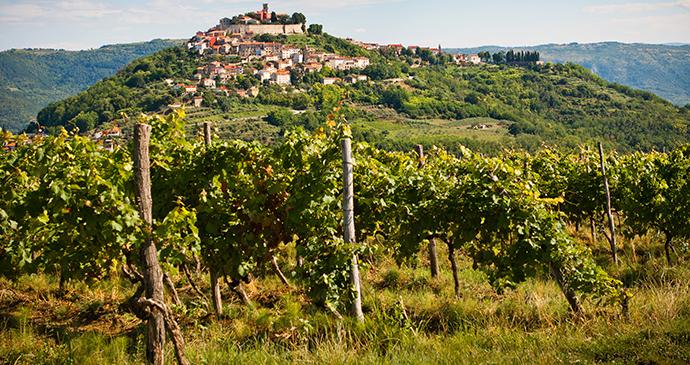 Motovun, Istria, Croatia by Vera Kailova, Shutterstock