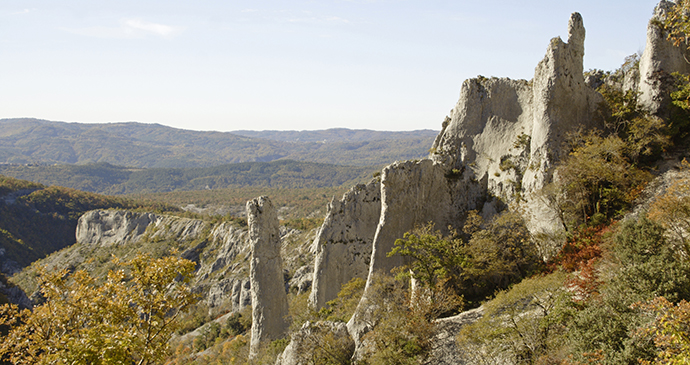 Vela Draga, Istria, Croatia by mina, Shutterstock