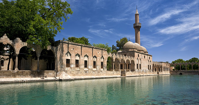 sacred pool by mosque in urfa eastern turkey by witr shutterstock