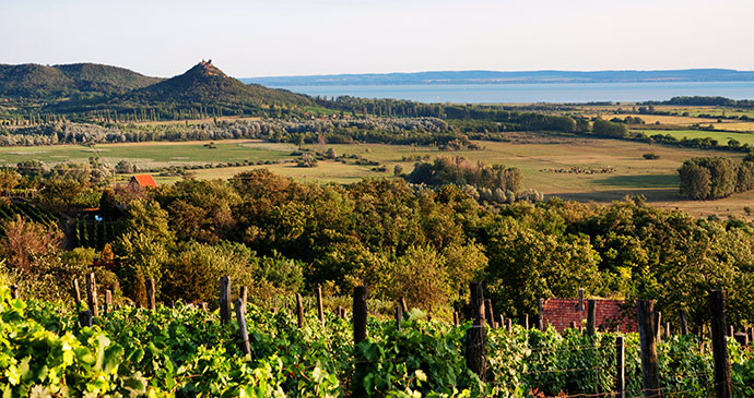 Lake Balaton Hungary by pgaborphotos Shutterstock