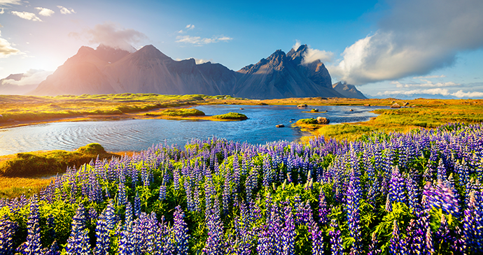 Stokknes, Iceland by Andrew Mayovskyy, Shutterstock