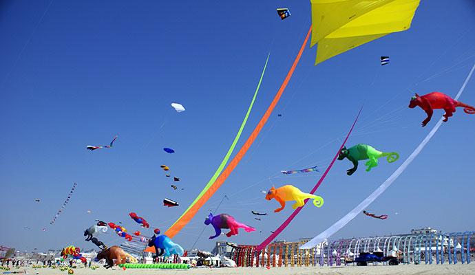 Kite festival Berck-sur-Mer France by freephoton Dreamstime