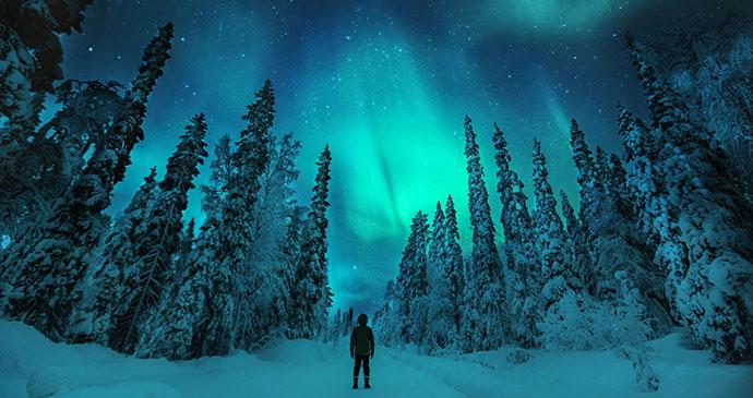 Forest aurora, Finland by Konsta Punkka, VisitFinland