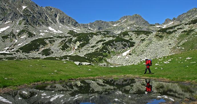Carpathian Mountains, Transylvania, Romania by Dan Tautan, Shutterstock