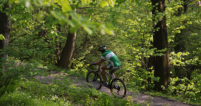 Cyclist, Mt Avala, Serbia by Archive National Tourism Organisation Serbia