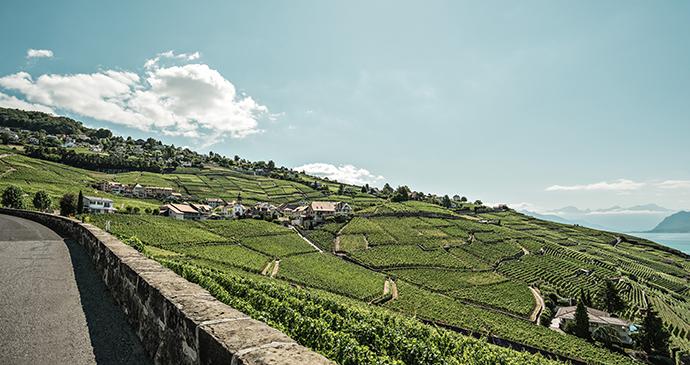 Lavaux vineyard Lake Geneva by Ivo Scholz Switzerland Tourism