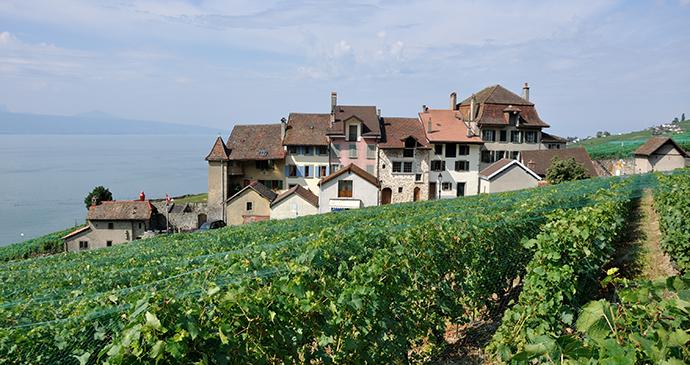 St-Saphorin in Lavaux area Switzerland by Hansueli Krapf Wikimedia Commons