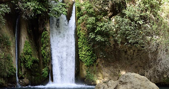 Banias waterfall Israel by leospek, Shutterstock