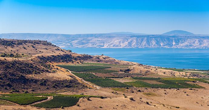 Sea of Galilee by Roman Sulla, Shutterstock