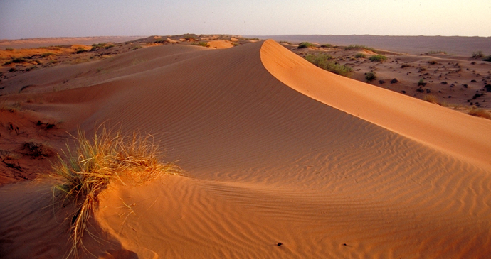 Wihibah Sands, Ash Sharqiyyah, Oman by Oman Ministry of Tourism