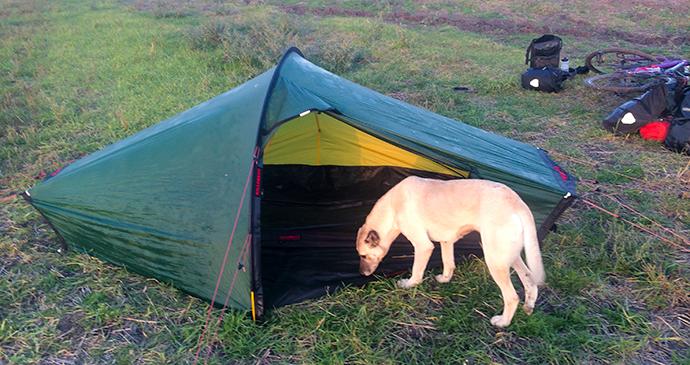 Lucy examines tent © Ishbel Holmes