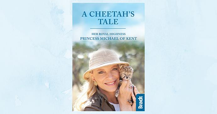 A Cheetah's Tale banner