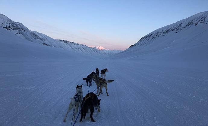 Todalen Svalbard by Kelsey Camacho