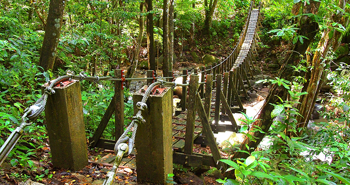 Bridge. Segment 11, Wai'tukubuli National Trail, Dominica by Paul Crask