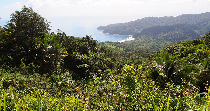 Pagua Bay, Segment 7, Wai'tukubuli National Trail, Dominica by Paul Crask