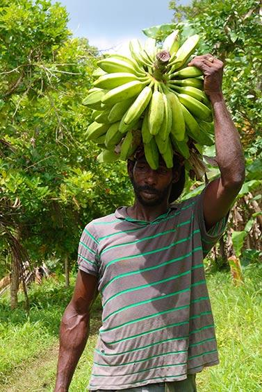 Banana farmer, Grenada by Celia Sorhaindo