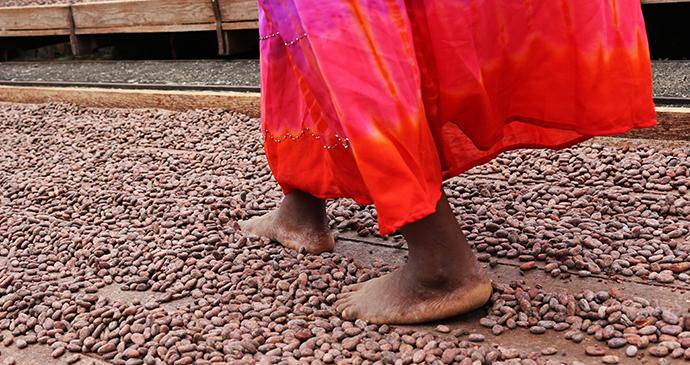 Woman walking on cocoa beans in Grenada by Qin Xie Shutterstock