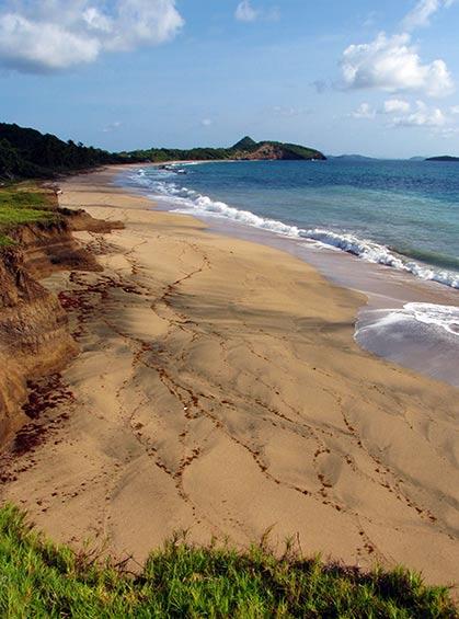 Bathway Beach Grenada by Celia Sorhaindo