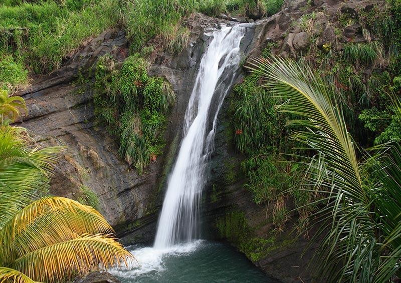 Concord Falls, Grenada by Celia Sorhaindo