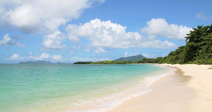 Paradise Beach Grenada by Celia Sorhaindo