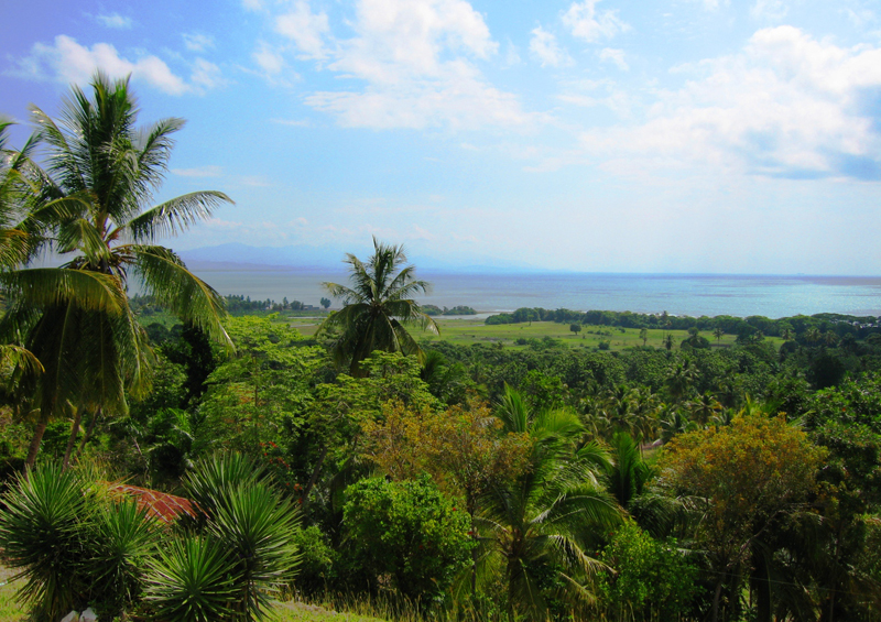 A view of the Haitian landscape, Hispaniola, Haiti by Michelle Walz Eriksson, Wikipedia