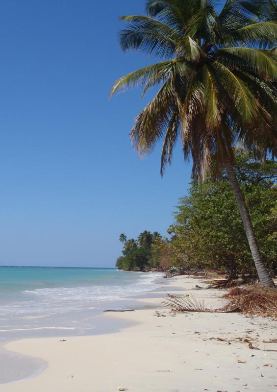 Beach at Port Salut, Haiti by Paul Clammer