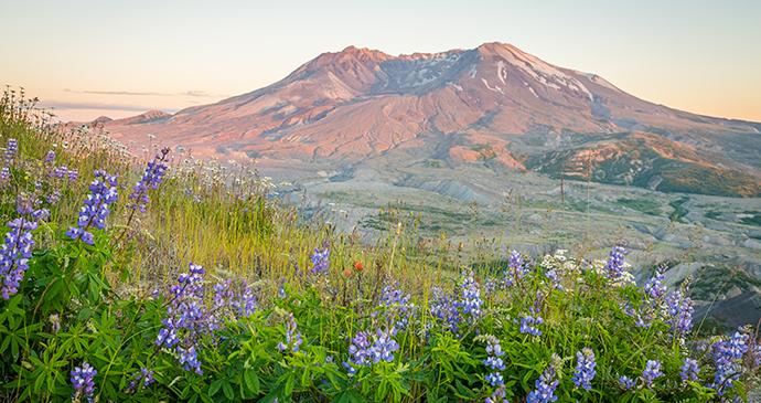 Mount St Helens Coast Starlight Train USA Roman-Khomlyak Shutterstock